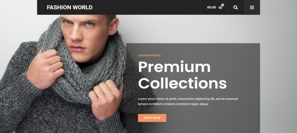 Fashion-Store-–-Just-another-PickMySite-site (1)
