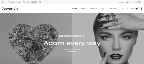 Jewelry-Store-–-Just-another-PickMySite-site (1)