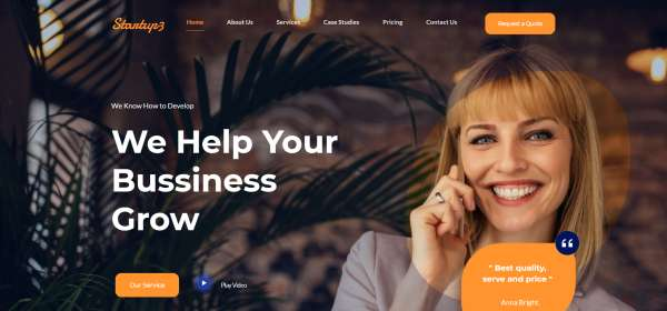 Startup-Business-–-Just-another-PickMySite-site (1)
